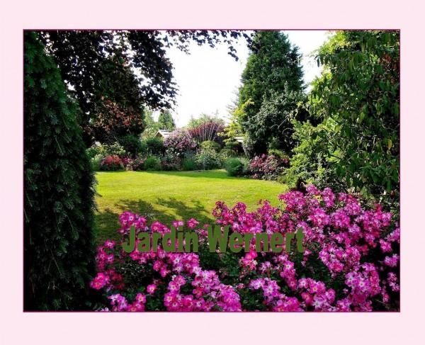 Jardin mus 2016